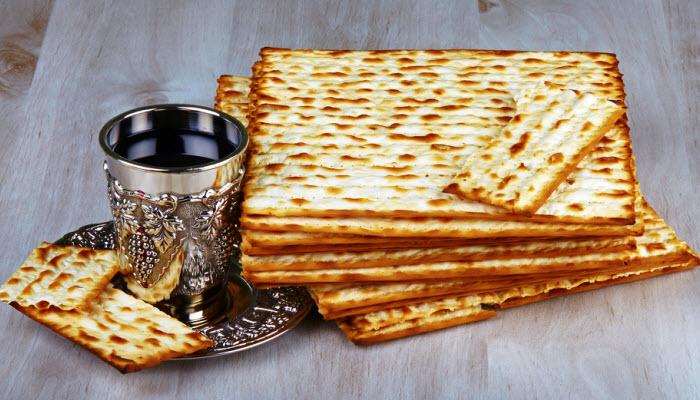Passover Seder Menu (Fish)